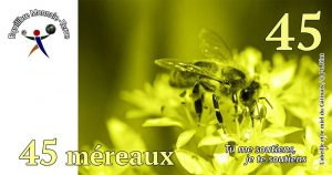 mereaux_45